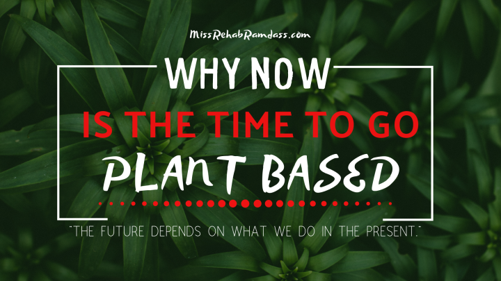 Why Now Is The Time To Go Plant Based